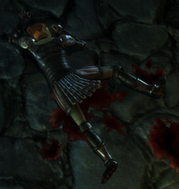Leliana bloody