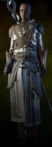 File:Orlesian Army Battlemage Armor Femquisitor.png