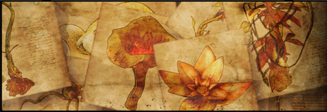 File:Herb Quest Banner.png
