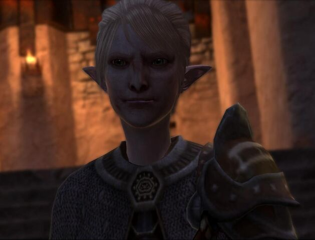 File:Elven fanatic.jpg