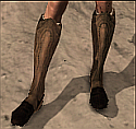 File:Hunter's Boots.png