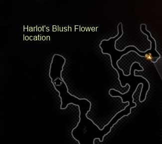 File:Harlot's blush.jpg