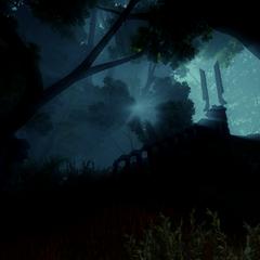 The Basin at night