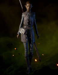 File:Crafted Sturdy Apprentice Coat.png