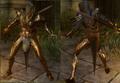 Enlightened Warrior's Armor.png