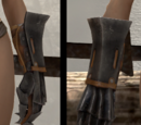 Gauntlets of the Champion