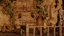 Avvar Allies Quest Image