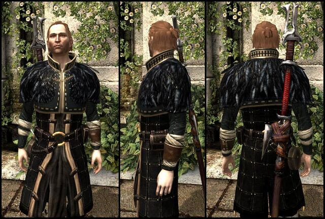 File:DA2 Renegade's Coat - 2 - Black - Anders companion armor.jpg