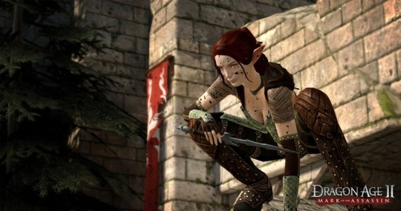 File:Dragon-Age-2-Mark-of-the-Assassin-Screen-3.jpg