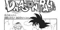 Piccolo Jr. Saga