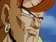File:Android16c.PNG