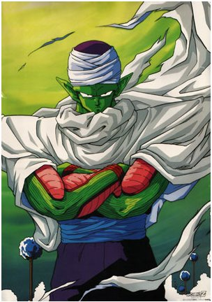 File:Piccolo my entry.jpg