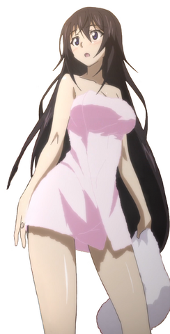 File:Towels infinite stratos shinonono houki soft shading anime desktop 2000x3932 hd-wallpaper-880744.png