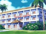 PapayaHospital