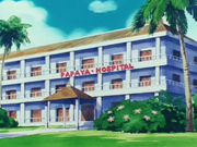 PapayaHospital.png