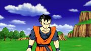 Potential Unleashed Future Gohan