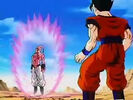 Dbz249(for dbzf.ten.lt) 20120505-12003434