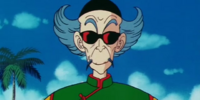 Mestre Tsuru
