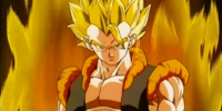 What did you like about Gogeta?