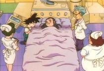 Pan in bed