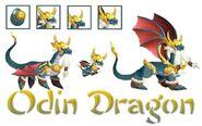 Odin-dragon-collagegfgf