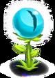 CatEye Flower