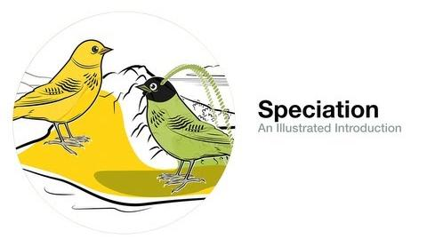 Speciation An Illustrated Introduction