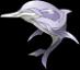 White Dolphin