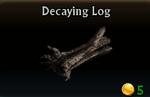 Decaying Log