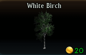 File:White Birch.png
