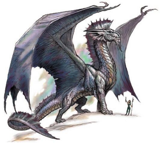 File:Silver-dragon.jpg