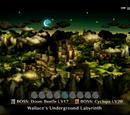 Wallace's Underground Labyrinth