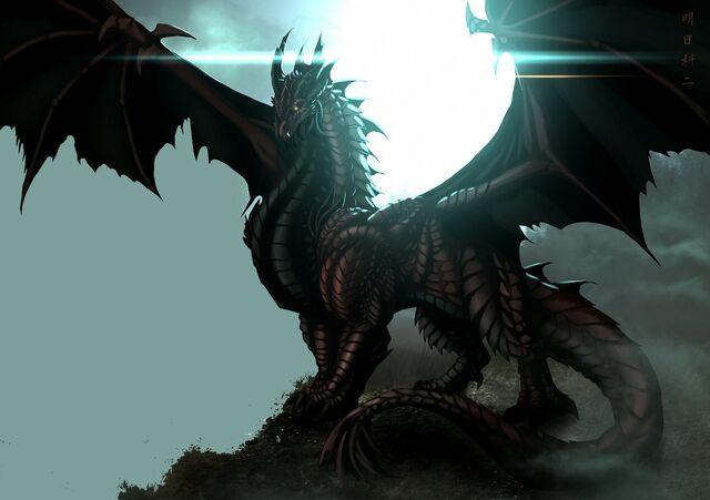 File:King of dragon.jpg