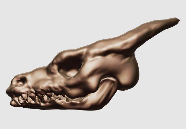 File:Dragonhead 1-1 skull.png