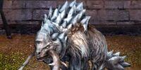 Frosty Sawtooth Dragon