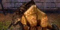 Ralthon Plated Longtooth Dragon
