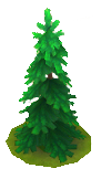 File:LargeFirTree.png
