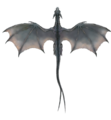Gray Dragon (overhead).png
