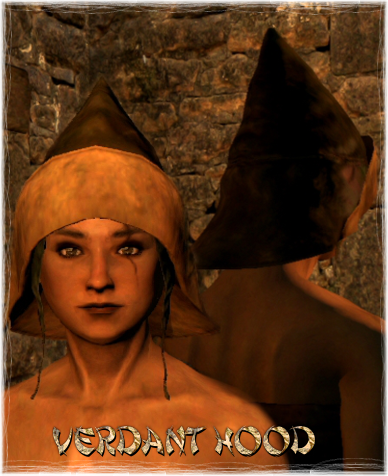 File:Armour Head Verdant Hood.png