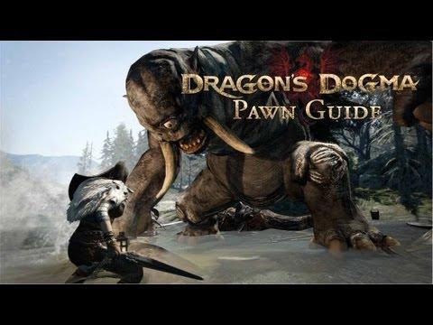 File:Pawn Guide.jpg