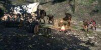 Travelers' Camp