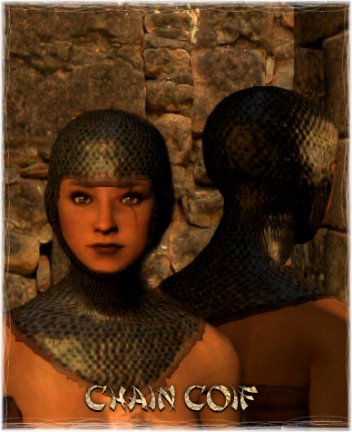 File:Armour Head Chain Coif.png