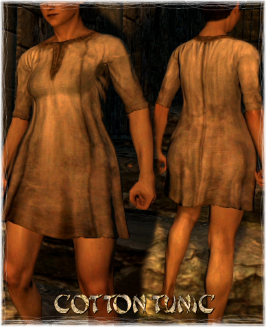 File:Armour Torso Cotton Tunic.png