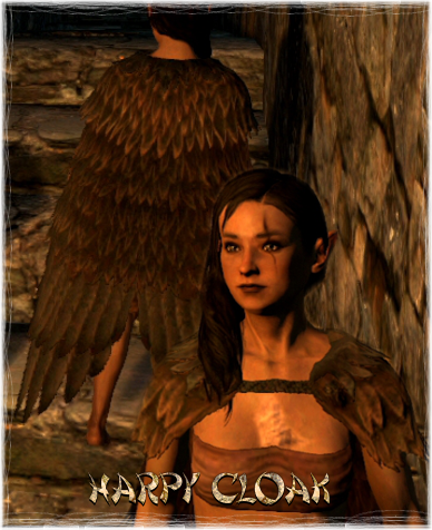 File:Accoutrements Harpy Cloak.png