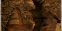 Archwizard's Helm