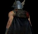 Dragon Knight's Cloak