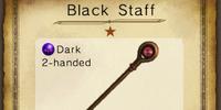 Black Staff
