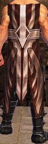 Lvl 60 BrokenFeather cloak