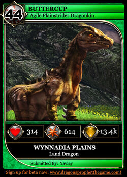 Dragon Card Land Example