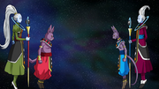 Champa Discovered